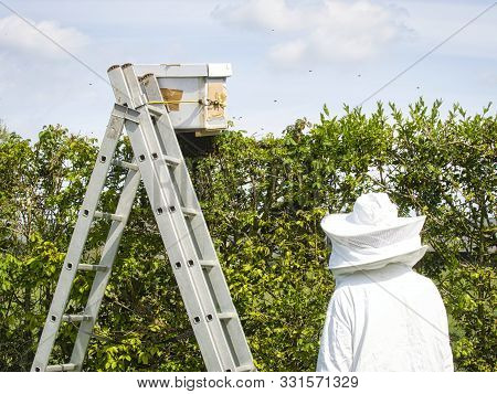 Portrait Of Beekeeper In Protective Clothing Holding Smoker Near Scale Near Hedge While Standing At