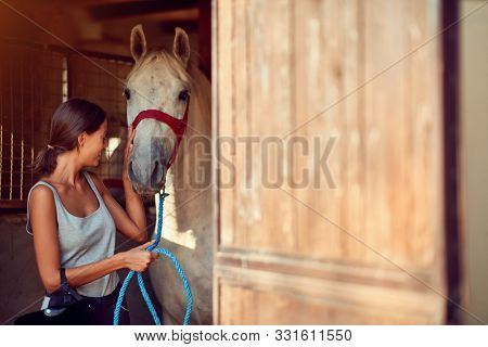 Horses in stable.Young girl taking care about a horse on an animal ranch