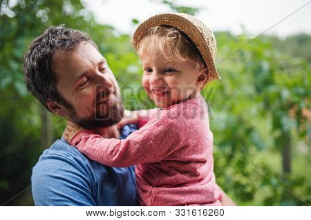 A Close-up Of Father With Toddler Boy Standing Outdoors In Garden In Summer.