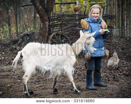 Girl Feeds A Goat. The Way Of Life Of A Child In The Village