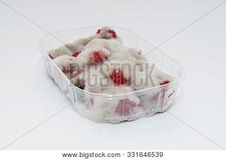 Closeup Of Rotten Moldy Raspberry In Plastic Box Isolated On White Background, Top View. Damaged Rip