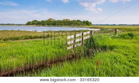Dutch Rural Landscape In Spring