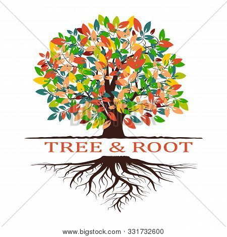 Autumn Tree Silhouette. Isolated On White Background. Vector Illustration. Tree With Roots. Isolated