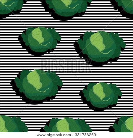 Seamless Background With Stripes And Kale Heads With Dark Shadow. Vector Illustration Design For Tem