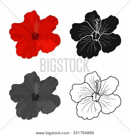 Vector Illustration Of Hibiscus And Rose Symbol. Web Element Of Hibiscus And Flower Vector Icon For
