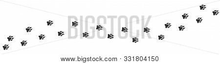 Wolf Paws Print. Footpath Trail Of Animal, Vector Illustration