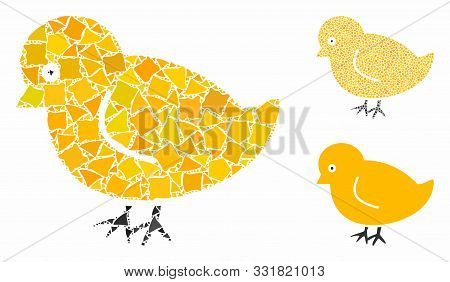 Nestling Chick Composition Of Rough Parts In Various Sizes And Color Tinges, Based On Nestling Chick