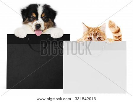 Puppy Dog And Cat Pets Together Showing  Black And Silver Shopping Bags Isolated On White Background