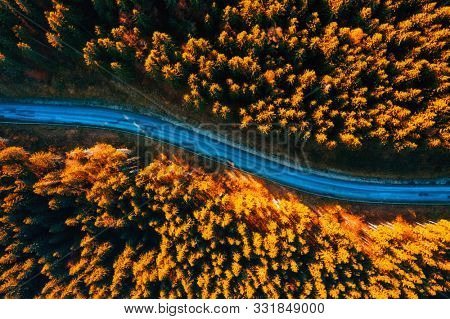 Aerial view of curved road through yellow fir forest. Location of Carpathians mountain, Ukraine, Europe. Image of wonderful scenery, nature wallpapers. Drone photography. Discover the beauty of earth.