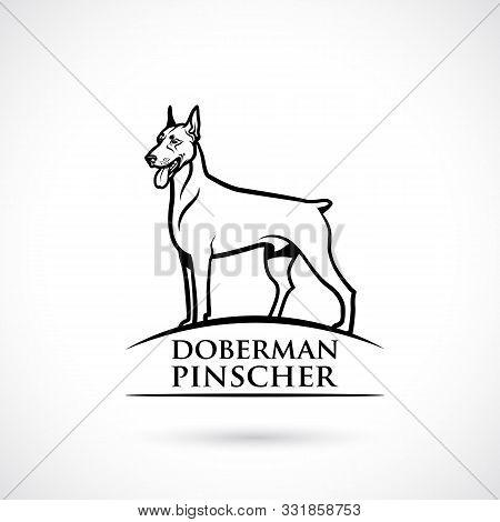 Doberman Pinscher - Isolated Vector Illustration - Vector