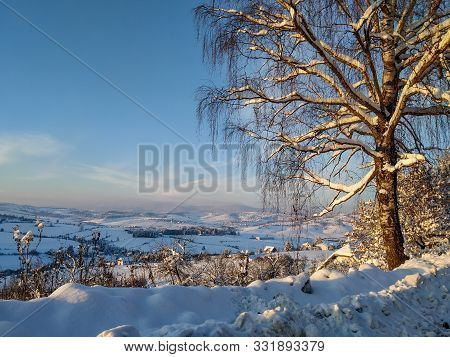 A View Of A Big Beautiful Tree Covered In Snow And A View On A Big Snowy Field During Beautiful Sunn