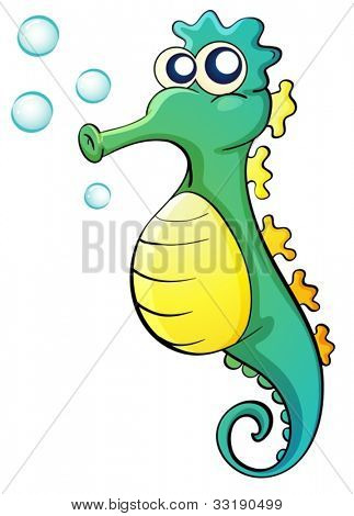 Illustration of a seahorse on white