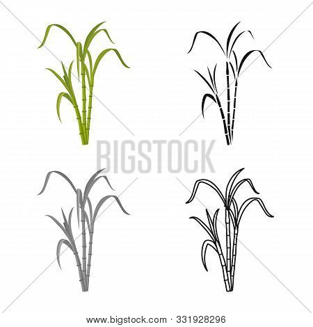 Isolated Object Of Reeds And Leaf Sign. Web Element Of Reeds And Sugar Stock Vector Illustration.