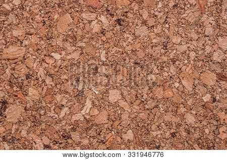 Close-up of brown cork board texture background. Empty bulletin board, natural texture detail with free space copy for text. poster
