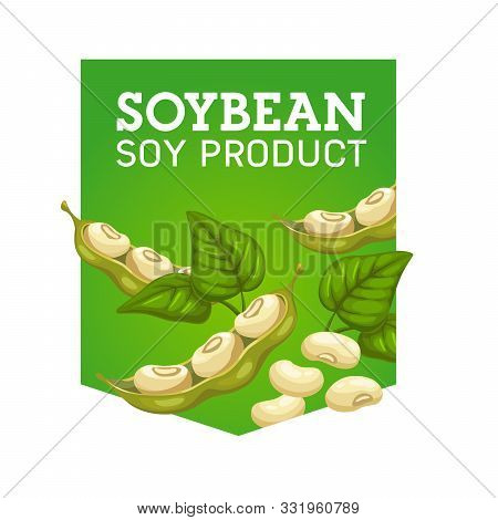 Soy Bean Product, Organic And Natural Food Isolated Emblem. Vector Harvest Of Soybean Pods And Leave