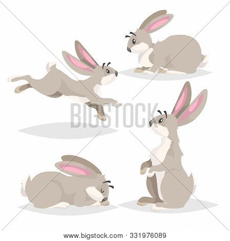 Cute Cartoon Rabbits Set. Different Poses Farm And Wild Animals Collection. Sitting, Running, Sleepi