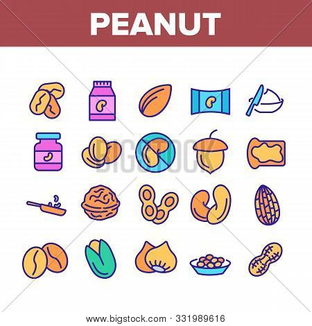 Peanut Food Collection Elements Icons Set Vector Thin Line. Peanut Oil And Butter, Acorn And Hazel,