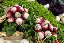 Herbs And Vegetables In The Supermarket, Ukraine