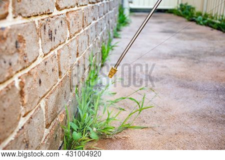 Spraying Weed Killer Herbicide To Control Unwanted Plants And Grass On A Backyard. Building Exterior