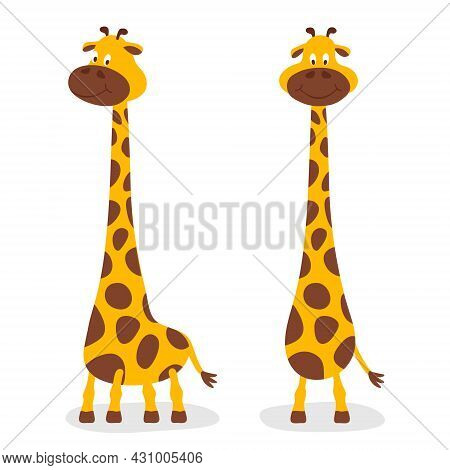 Vector Cartoon Cute Giraffe Baby Set Isolated. Two Full Length Giraffes, Design Template For Print,