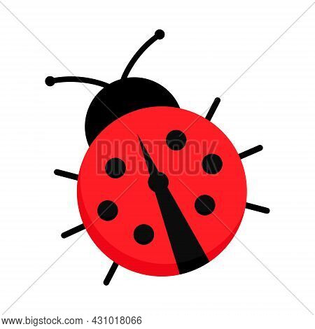 Ladybug Or Ladybird Cute Vector Graphic Drawing