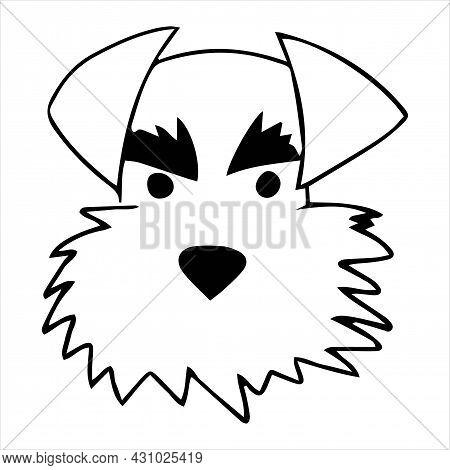 Vector Portrait Of A Mittel Schnauzer Dog In Doodle Cartoon Style. Pet Illustration In Line Art Styl