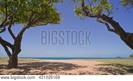 Blue Ocean, Beautiful Trees, Yellow Sandy Beach Nature Tropical Islands Oahu Hawaii. Pacific Ocean.
