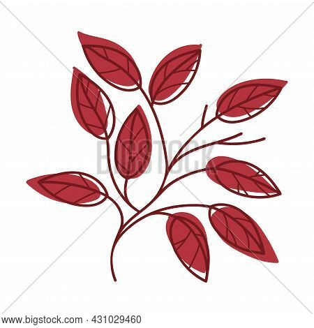 Red Autumn Leaf With Veins As Seasonal Foliage On Stem Vector Illustration