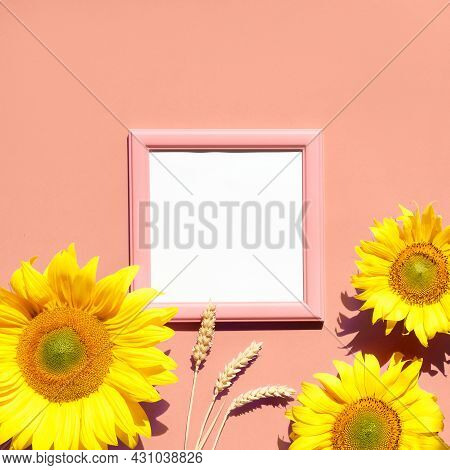 Flat Lay Mockup With Natural Sunflowers, Wheat Ears. Sunlight, Long Shadows. Copy-space, Text Space