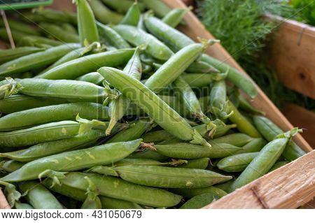 New Harvest Of Green Garden Snap Peas On Weekly Market In Provence, France Close Up
