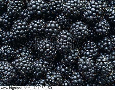 A Lot Of Ripe Delicious Ripe Blackberries Close Up - Food Background