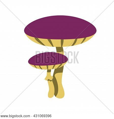 Purple Mushrooms In Flat Style Isolated On White Background. Vector Illustration