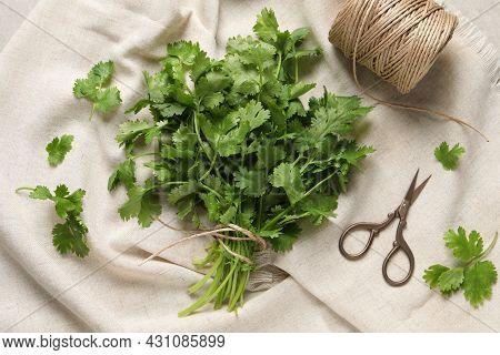 Fresh Green Cilantro, Twine And Scissors On White Fabric, Flat Lay