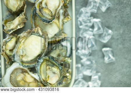 Fresh Oyster On Ice Cubes. Delicacy Seafood