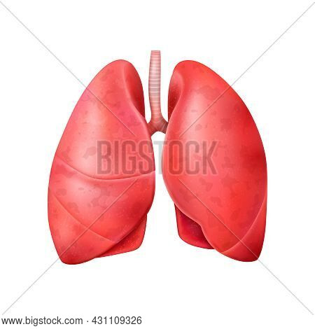 Realistic World Pneumonia Day Composition With Isolated Image Of Healthy Human Lungs Vector Illustra