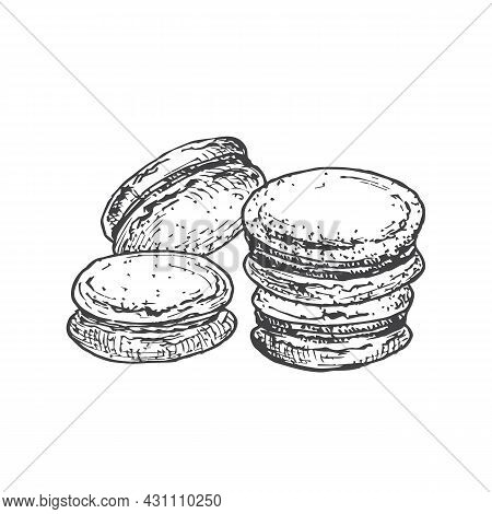 Macarons Sweets Hand Drawn Doodle Vector Illustration. Confectionary Sketch Style Drawing. Isolated