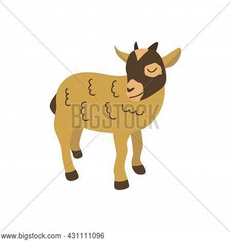 American Pygmy Goat. Mammal Herbivore. Colorful Vector Isolated Illustration Hand Drawn. Farm Animal