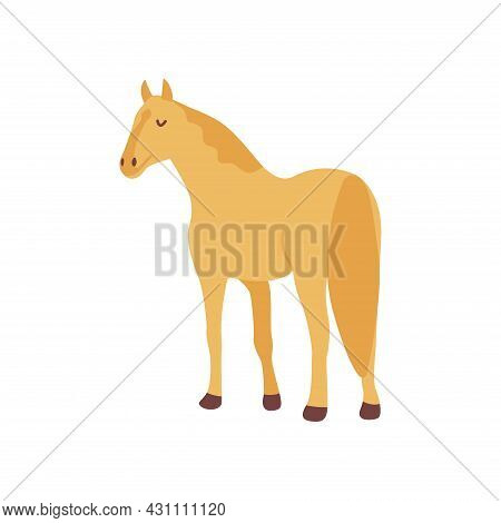 Golden Horse. Elegant Herbivore. Colorful Vector Isolated Illustration Hand Drawn. Farm Animal, Live