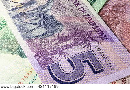 Close Up To Ten Dollars Of The Republic Of Zimbabwe. Paper Banknote Of The African Country. Detailed
