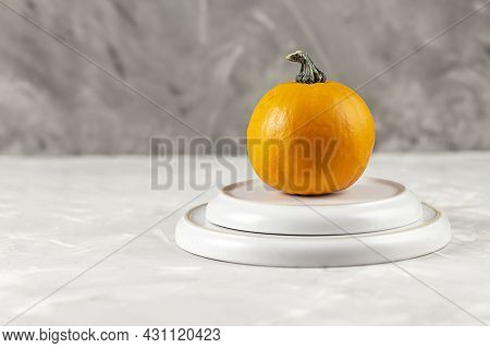 Traditional Thanksgiving Dinner. Pumpkin. Freshly Baked Pumpkin Pie. Copy Space.