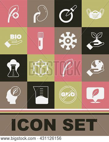 Set Location With Leaf, Hand Holding Earth Globe, Plant Hand, Petri Dish Pipette, Test Tube Flask, B