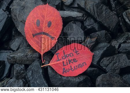 Leaf With Painted Sad Face And Leaf With Inscription Text - I Don't Like Autumn. Red Autumn Leaves O