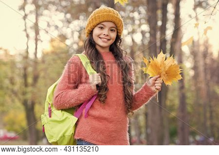 Place You Want To Be. Happy Kid Wear Knitted Sweater And Hat. Teen Girl Gathering Fallen Leaves. Chi