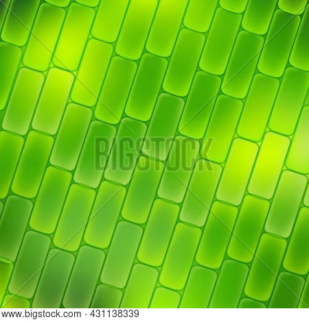 Plant Cell Magnification. Green Background. Vector Illustration