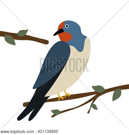 A Swallow Sits On A Tree Branch. Vector Flat Illustration. Vector Illustration