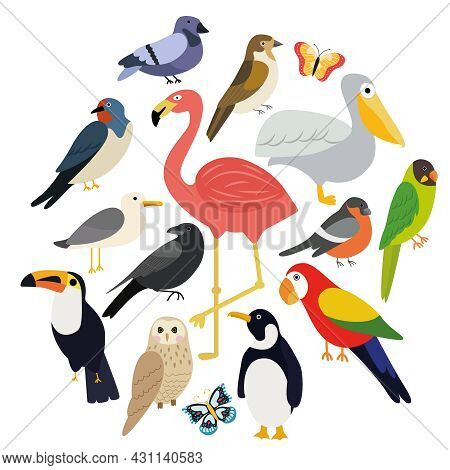 Vector Set Of Different Birds On A White Background Such As: Pelican, Flamingo, Penguin, Dove, Sparr