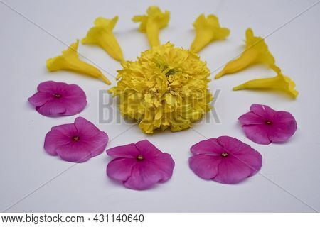 Beautiful Floral Pattern Using Different Coloured Flowers Like Marigold, Periwinkle. Flower Design M