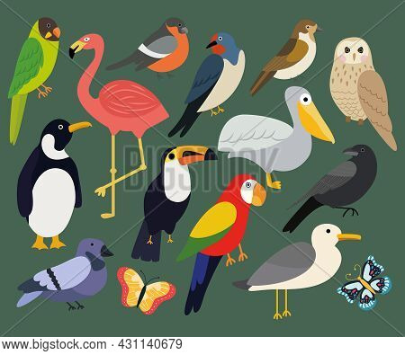 Vector Set Of Different Birds On A Green Background Such As: Pelican, Flamingo, Penguin, Dove, Sparr