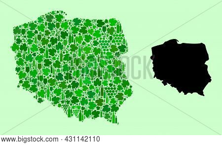 Vector Map Of Poland. Mosaic Of Green Grape Leaves, Wine Bottles. Map Of Poland Mosaic Formed With B