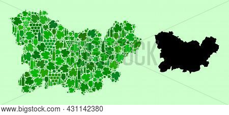 Vector Map Of Ourense Province. Mosaic Of Green Grape Leaves, Wine Bottles. Map Of Ourense Province